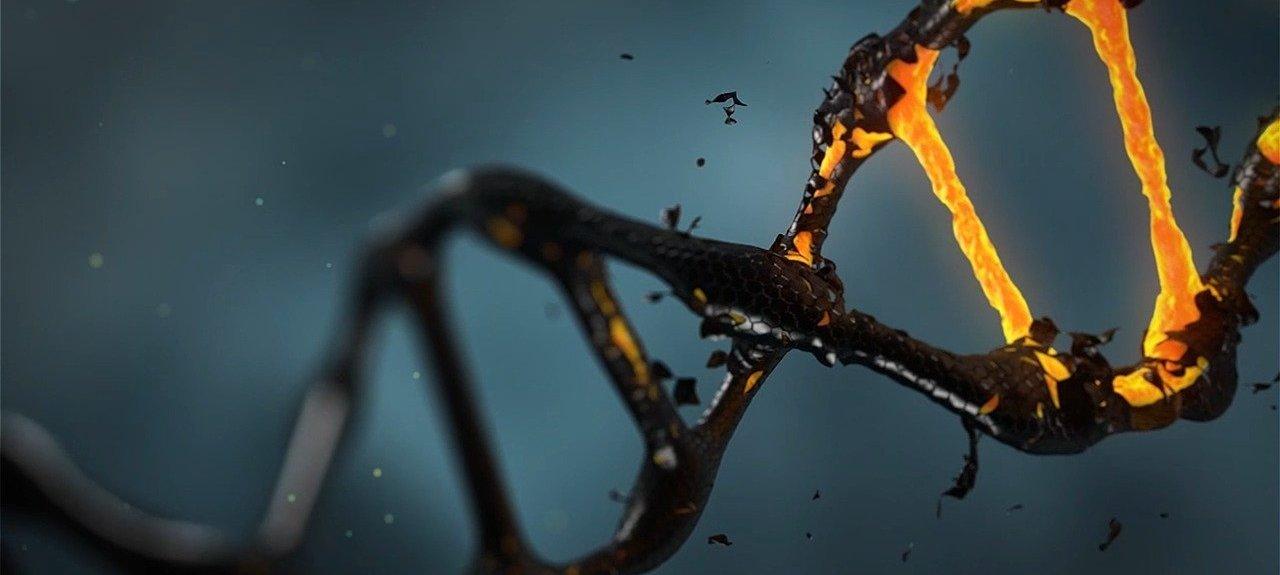 Atombindung & Molekülbindung